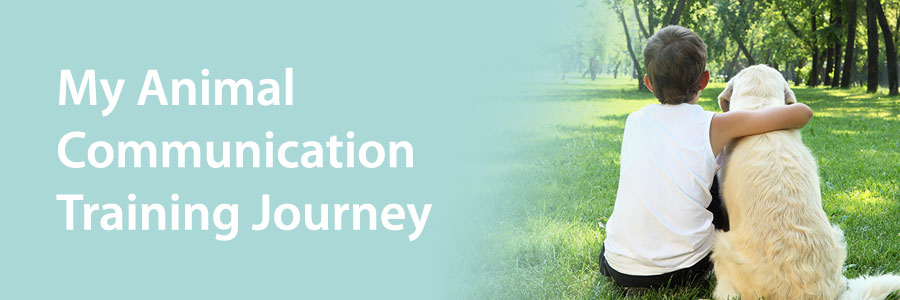 Learning animal communication is a journey
