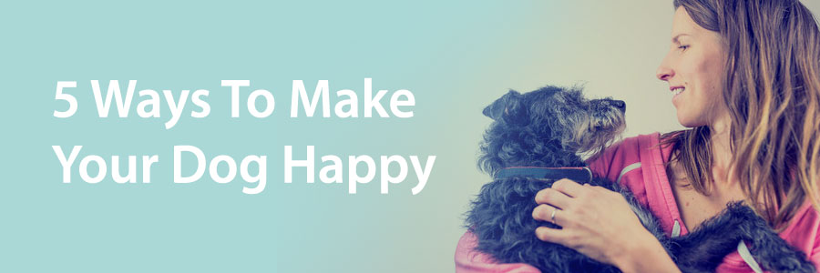 happy dog guide