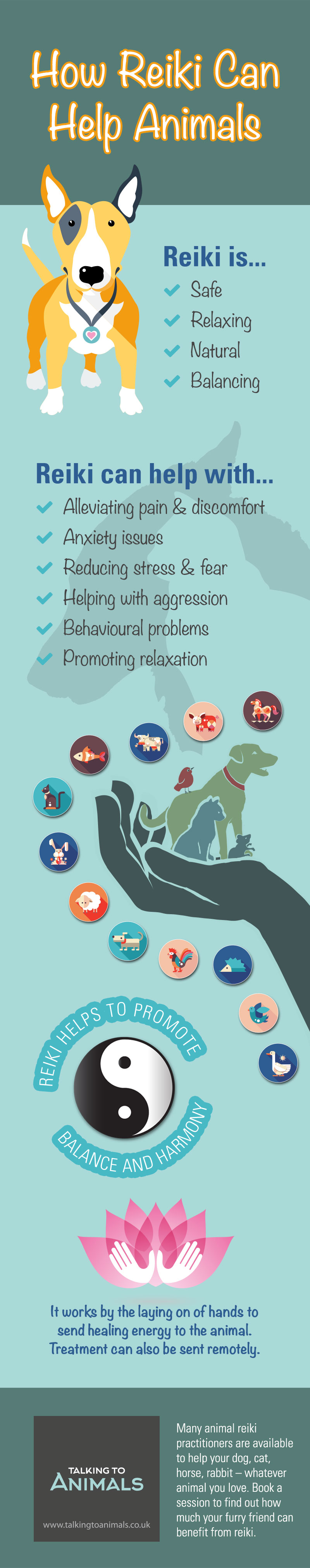 Reiki energy healing for animals infographic