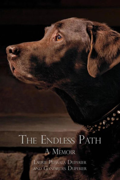 the endless path book cover